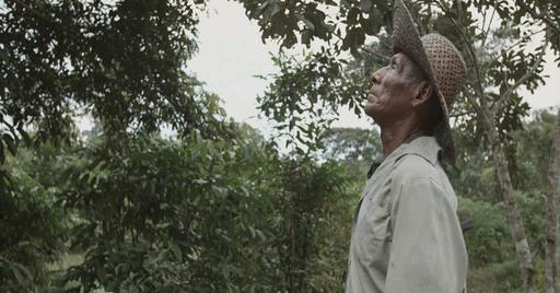 CAMBIANDO ESQUEMAS REFORESTAMOS PANAMÁ